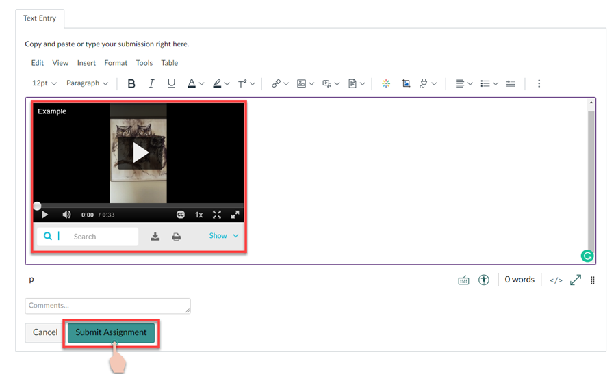 showing example of video embedded and location of submit button