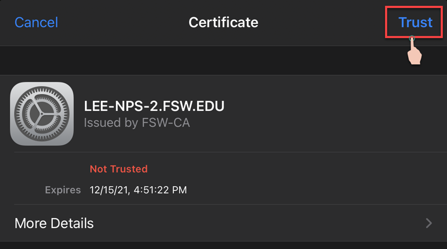 Certificate image ready to select trust outlined
