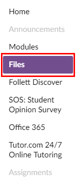 Picture showing the Files link in the course navigation